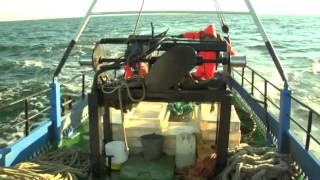 Tööstuslikud kalapüügiviisid EST