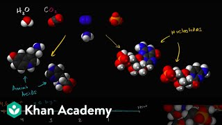 Origins of life  | Biology | Khan Academy