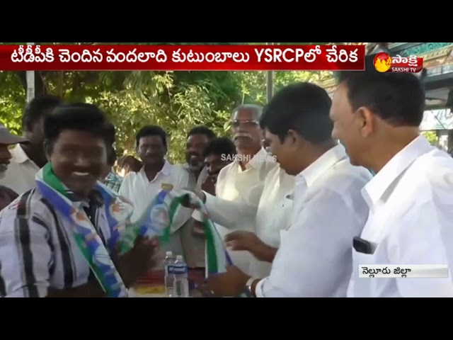 TDP Activists Joins YSRCP in Nellore  - Watch Exclusive