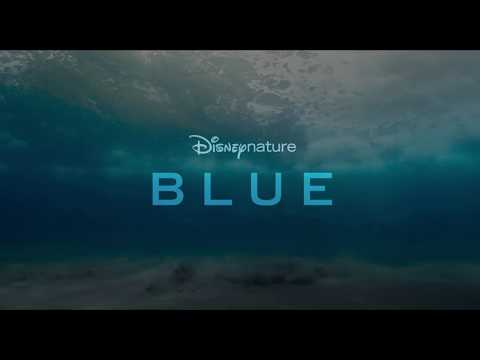 Disneynature Blue | Vanaf 2 mei in de bioscoop