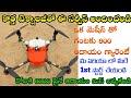 New Small Business Ideas In Telugu || Creative Business Ideas || Telugu Business Ideas