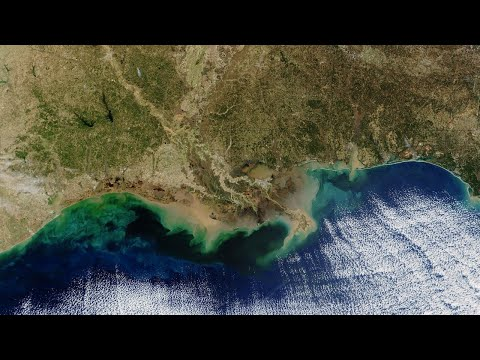 Dead zones: Gulf of Mexico