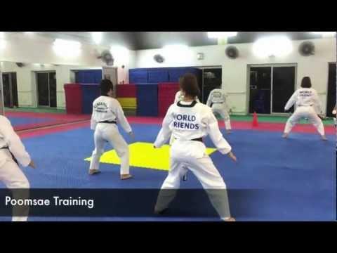 Singapore Taekwondo Peace Corps 2013