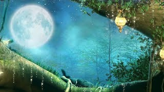 "Peaceful music, Relaxing music, Instrumental music ""Night Song"" by Tim Janis"