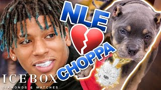 NLE Choppa Spends $50K on Diamond Grillz and Puppy Bling!