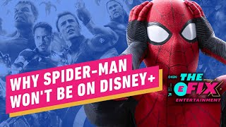 Netflix Makes Spider-Man Power Grab Over Disney Plus - IGN The Fix: Entertainment