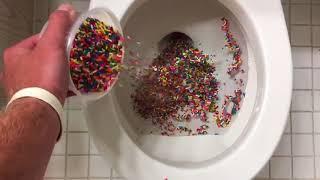 Will it Flush? - Rainbow Sprinkles
