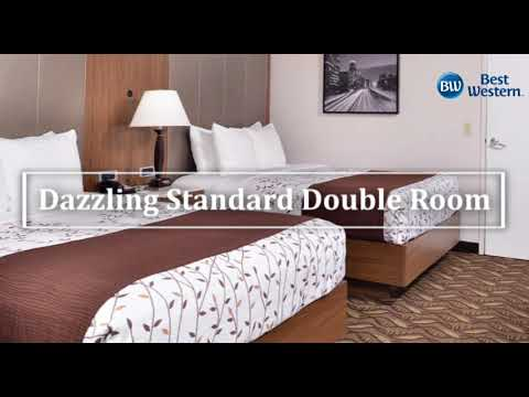 Best Western Airport Plaza Inn Inglewood CA