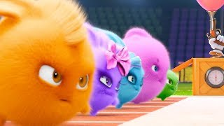 Sunny Bunnies - OLYMPICS COMPILATION | Videos For Kids | Funny Videos For Kids