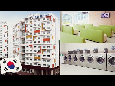 Tour pelo dormitório de uma UNIVERSIDADE COREANA