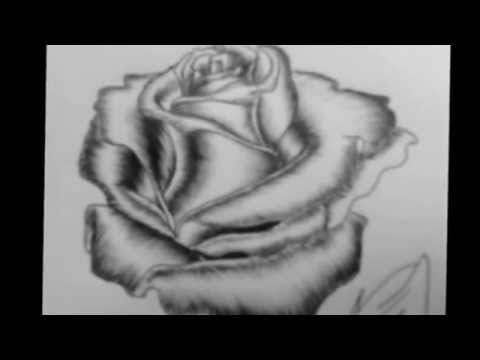 Como Dibujar Una Rosa En 3d A Lapiz Paso A Paso Imagui