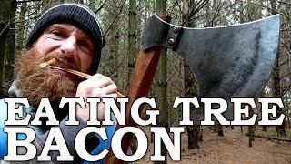 Eating TREE BACON like a BEAVER with Viking AXE! | Cambium Survival Food | Tormund Giantsbane
