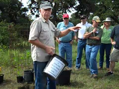 Bamberger Ranch tree planting pt 1