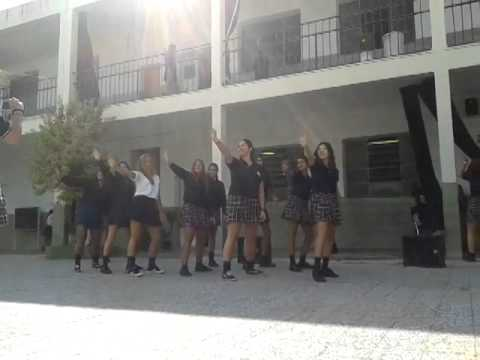 Baixar Ziguiridum @ school