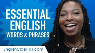 Essential English Words and Phrases to Sound Like a Native