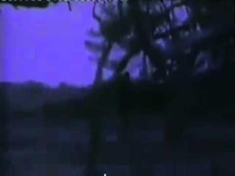Tarkan   Selam Ver 1992 klip