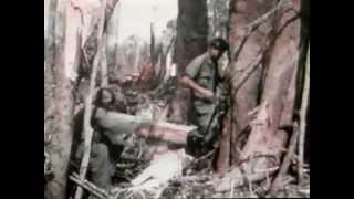 Army 4th Infantry In Vietnam