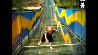 Most little man in china trying to cross glass bridge || Funny Kodo trying to cross glass bridge