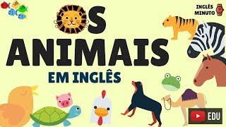 Os animais em Inglês - Inglês Minuto - Como falar o nome dos bichos em Inglês