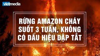 Rừng Amazon cháy suốt 3 tuần không có dấu hiệu dập tắt, Trái Đất mất đi 20% oxy?