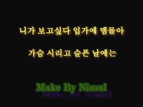 SS501 Because i'm stupid lyrics korean