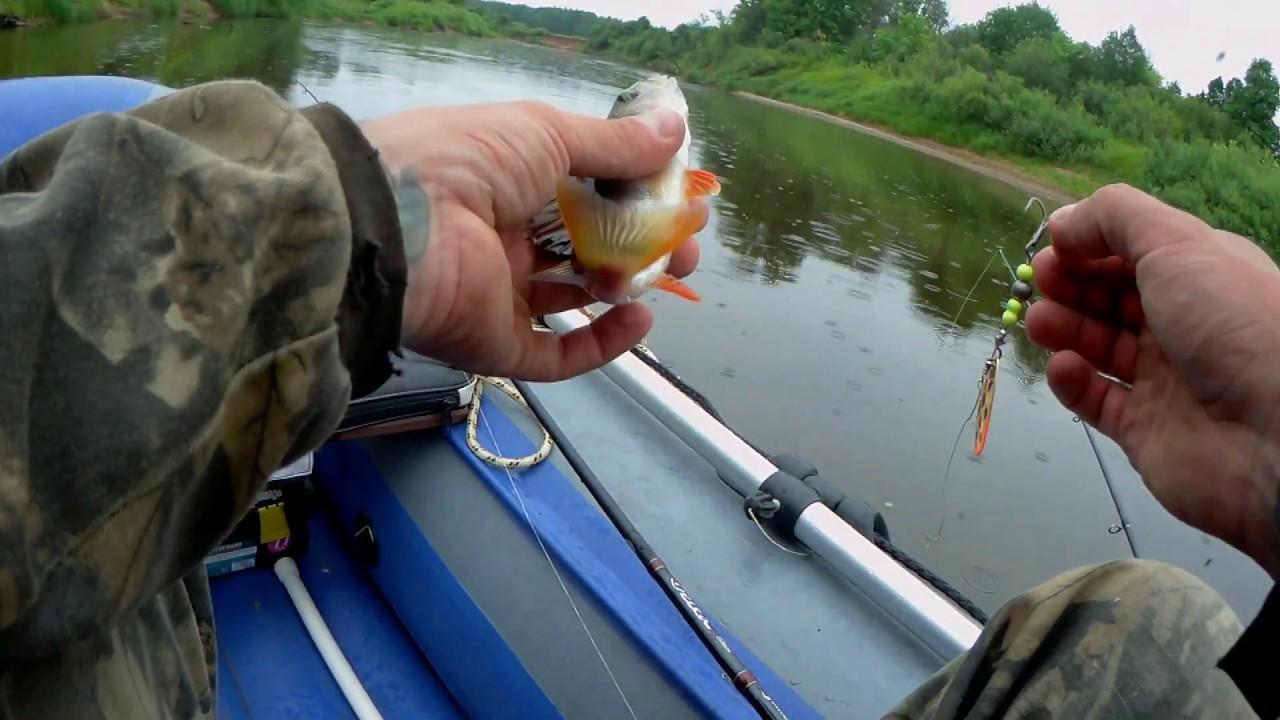 Река пижма кировская область рыбалка