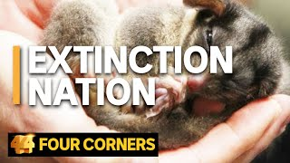 How Australia found itself in the midst of an extinction crisis | Four Corners