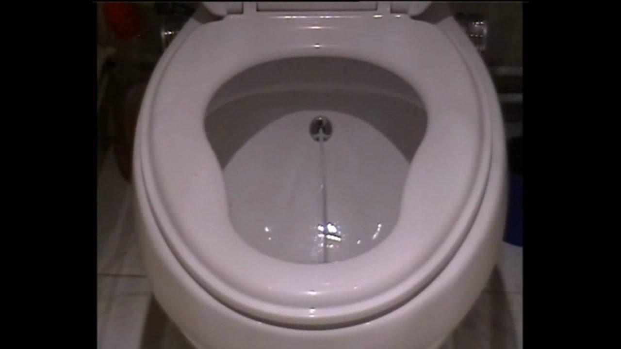 toilette mit waschfunktion toilette mit waschfunktion dusch wcs die hygienische toilette mit. Black Bedroom Furniture Sets. Home Design Ideas