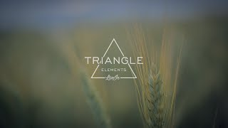 Triangle - Elements