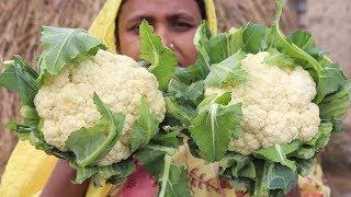 Village Food Cooking Farm Fresh Cauliflower in My Village Style Tasty & Delicious Cauliflower Fry