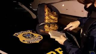 PRF prende homem com cocaína dentro de ônibus na BR-116, em Pelotas