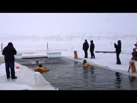 Jeremy Roberts 2013 Polar Plunge- Special Olympics Utah
