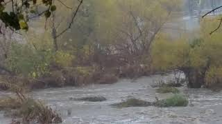 Los Angeles Storms Floods / L.A.'s Raging River