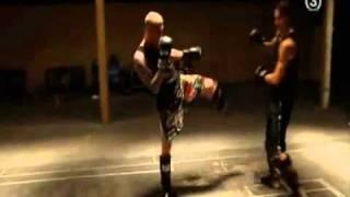 Ibrahimovic martial arts