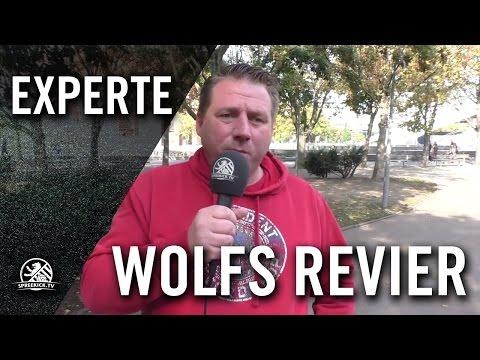 Wolfs Revier - Zwischenfazit   SPREEKICK.TV