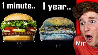 This FOOD Time Lapse Will SHOCK YOU..