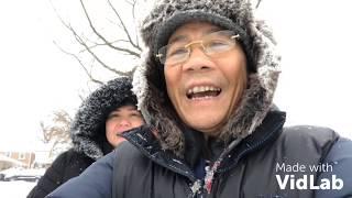 Vlog 26 ll Bão Tuyết Ở Chicago Mỹ, 2 Vợ Chồng Cào Tuyết Tìm Đường Ra