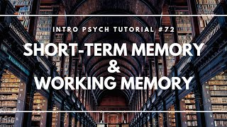 Short-Term Memory and Working Memory (Intro Psych Tutorial #72)
