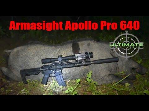 310lb Wild Boar with Armasight Apollo Pro 640 Thermal Hog Hunting at Night