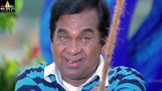 Brahmanandam Comedy Scenes Back to Back | Vol 3 | Non Stop Telugu Comedy | Sri Balaji Video