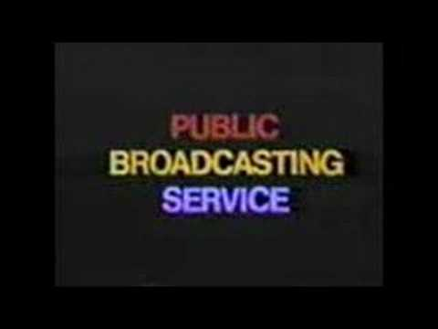 The public broadcasting service and the