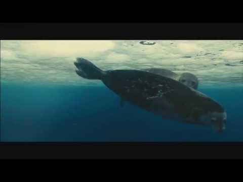 O.Z.O.N. | Ocean