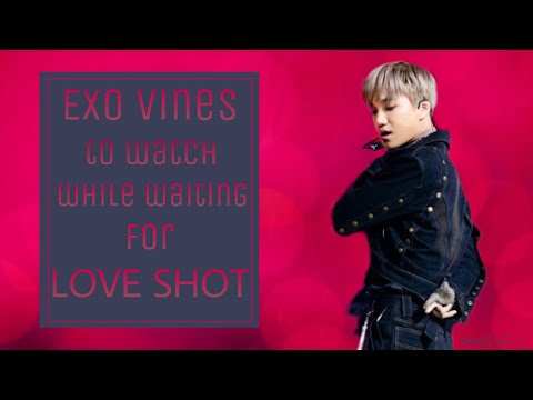 EXO Vines to watch while waiting for LOVE SHOT
