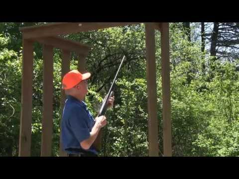 Patten Cat Shoot Out 2013