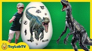 Giant Raptor Blue Dinosaur Egg! Surprise Toys & Dinosaurs For Kids from Jurassic World