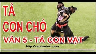 Tả con chó nhà em | Tập làm văn 5 - Tả con vật nuôi trong nhà