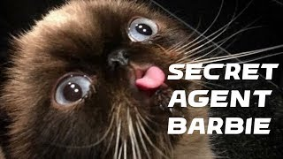 Secret Agent Barbie Speedrun (14:40) *WR*