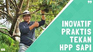 Inovatif Praktis Tekan HPP Sapi