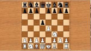 """Tập 2: Tennison gambit - Bẫy khai cuộc """"thắng nhanh"""" trong Cờ vua"""