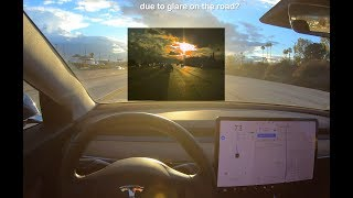 Tesla Autopilot Driving Directly Into the Sun